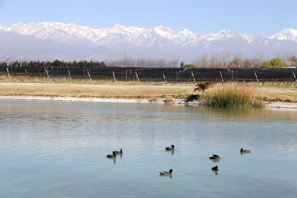 A water reservoir in mendoza