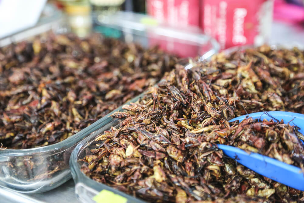 Chapulines crickets for sale in the markets in Mexico City
