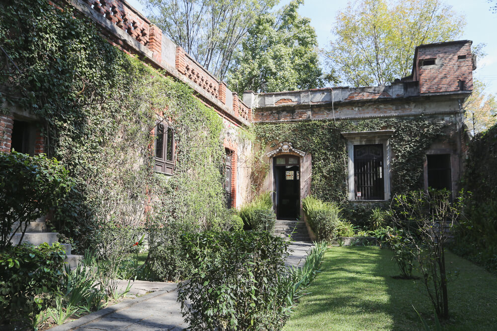 what to do in Coyoacan