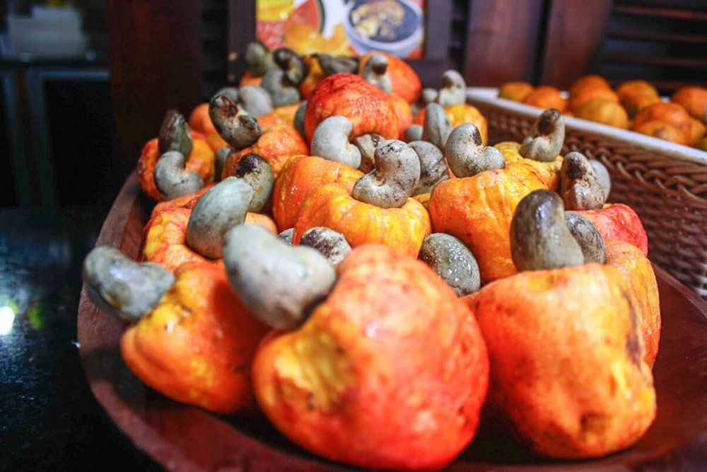 cashew apples in Fortaleza Brazil