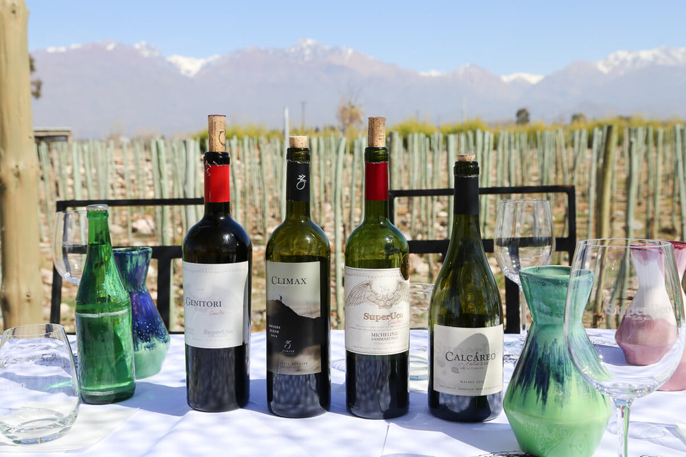 The tour wine tasting at SuperUco had the best view of the Andes from their deck