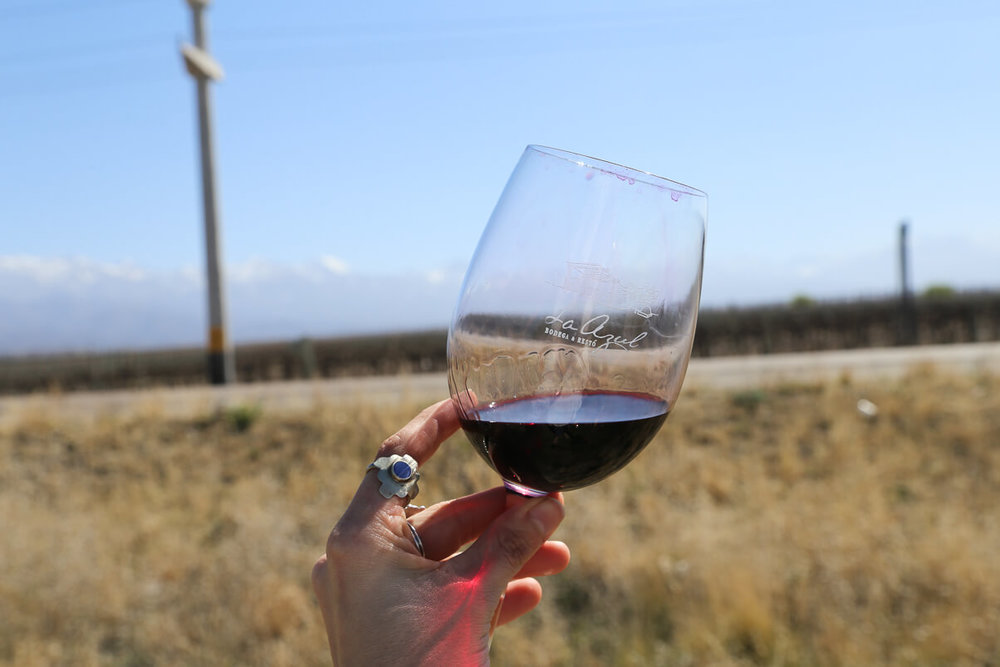 A glass full of Malbec wine with the Andes behind
