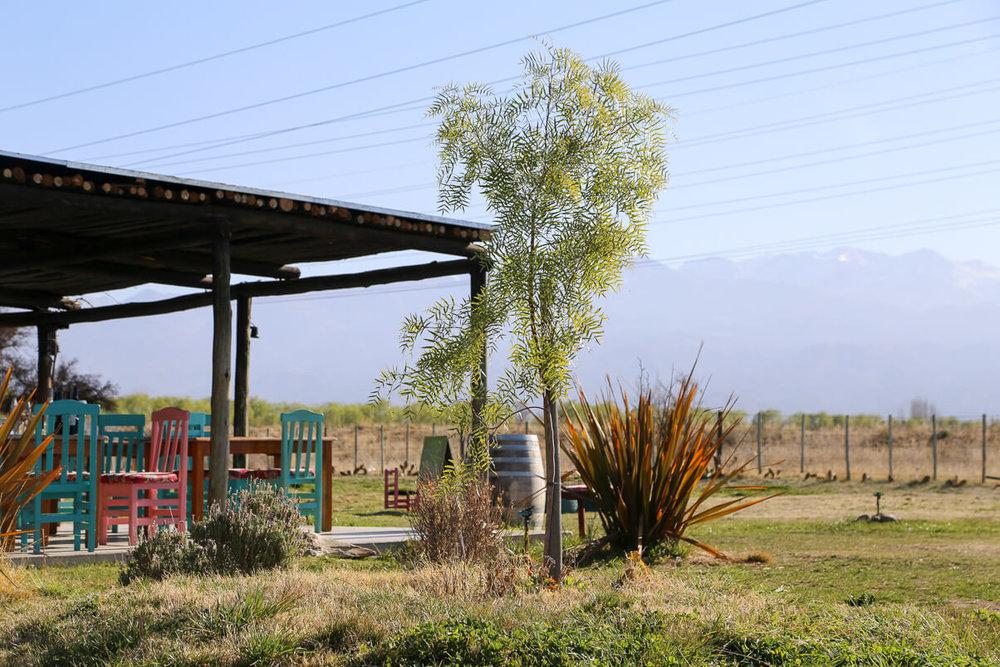 The restaurant at Bodega la Azul in Uco Valley