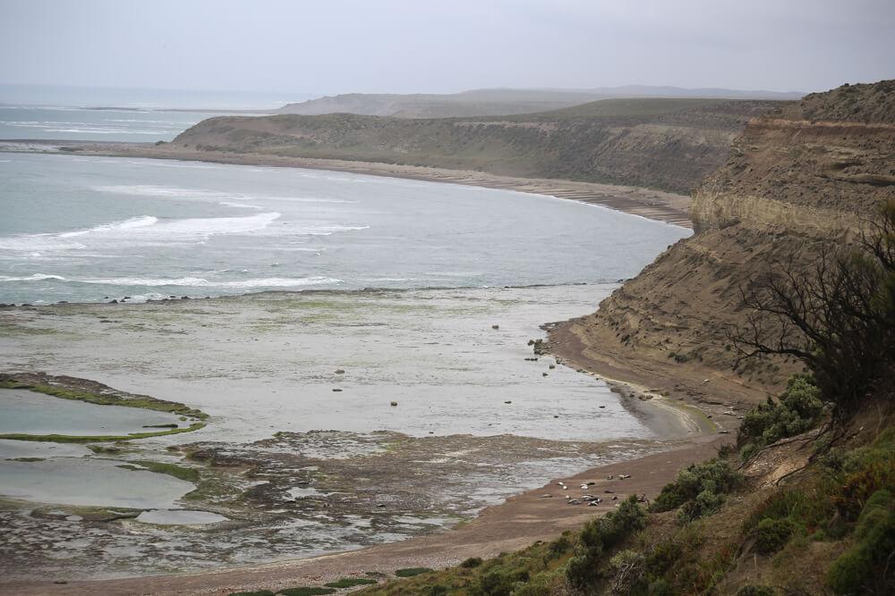 The rugged coastline at Punta Delgado elephant seal colony