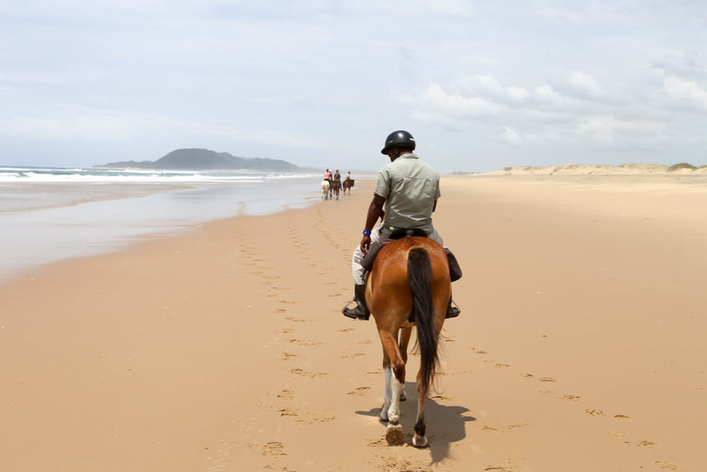 Horseback ride on the beach in Isimangaliso wetland park