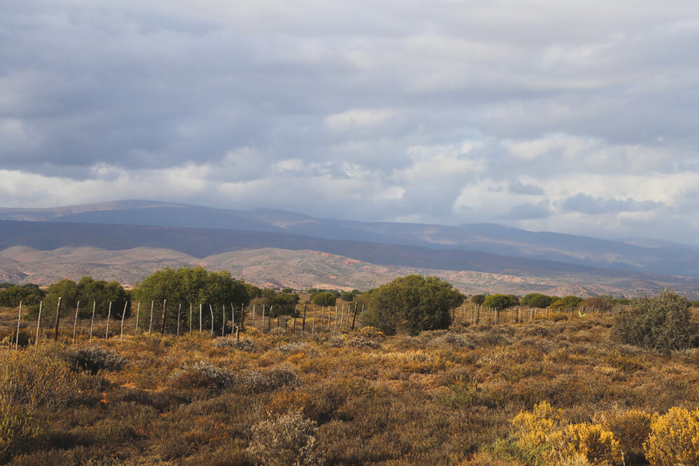 The little karoo South Africa