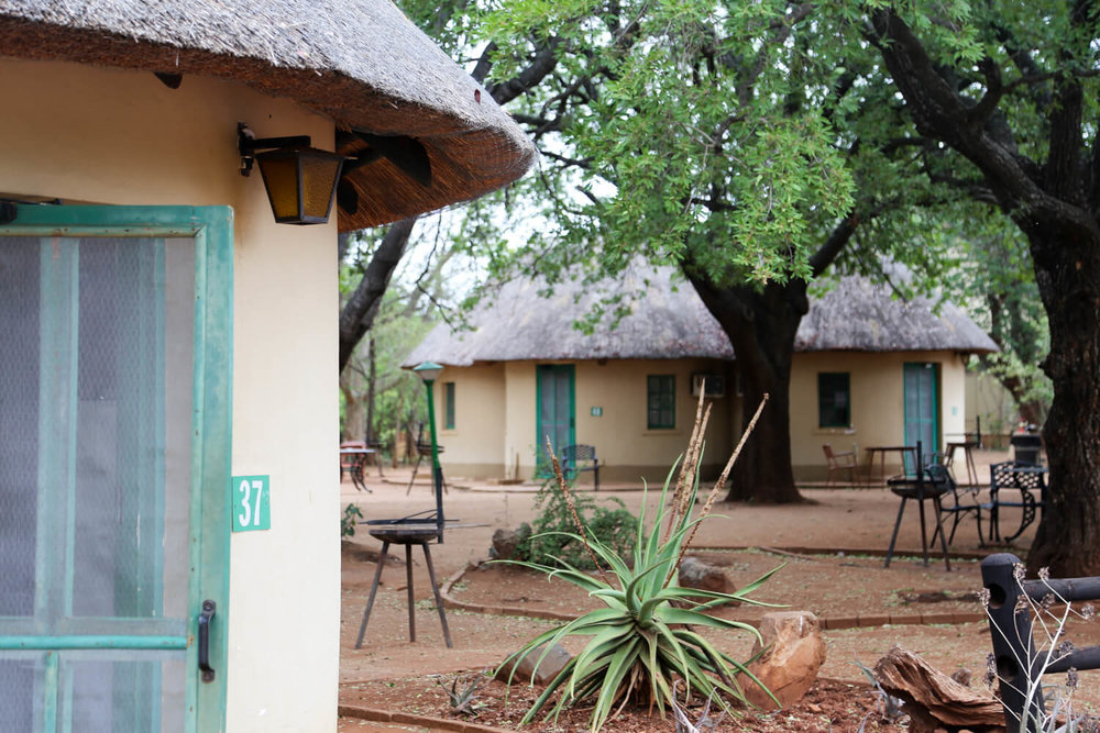 Best camps in Kruger National Park