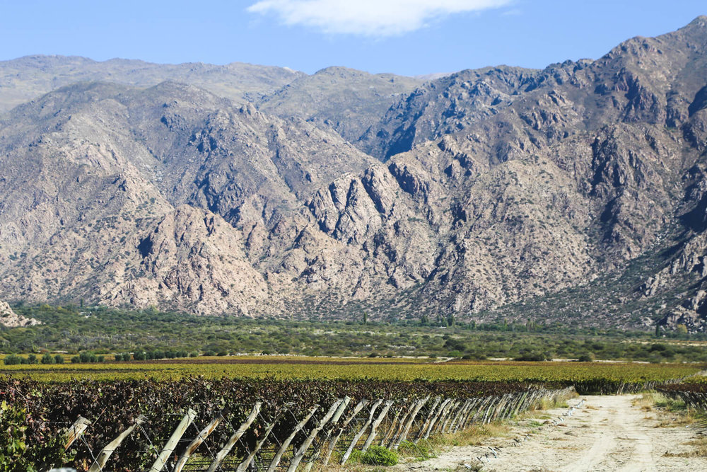 Things to do in Cafayate Argentina