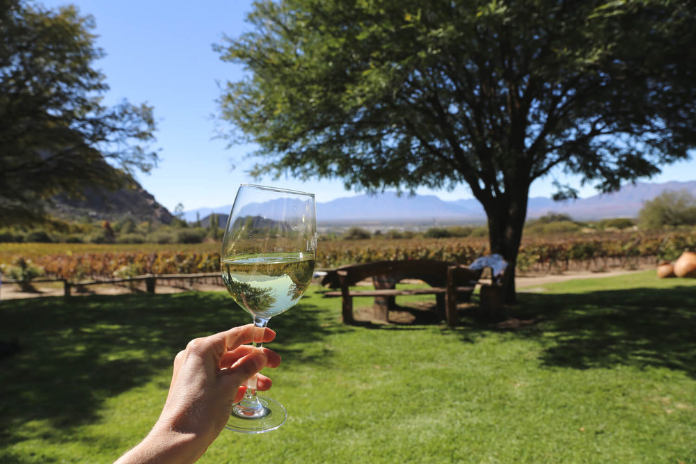 Drinking a glass of Torrontes on the lawn at Finca las Nubes