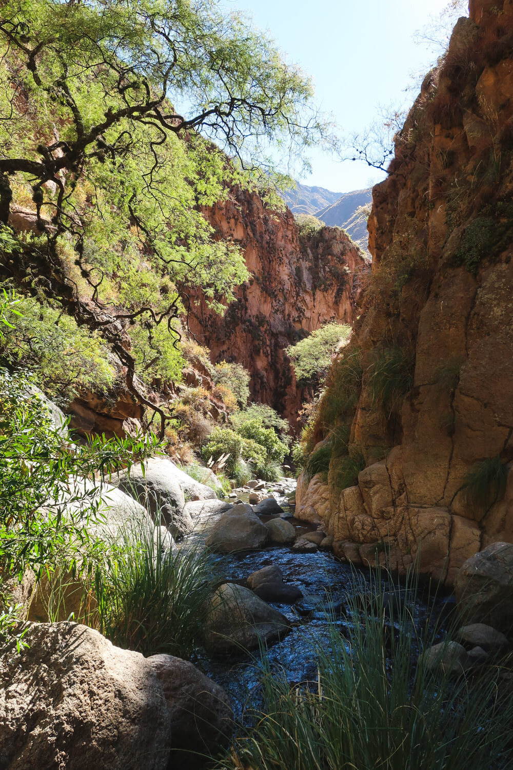 Things to do in Cafayate Argentine: Hike to the Casadas Waterfalls