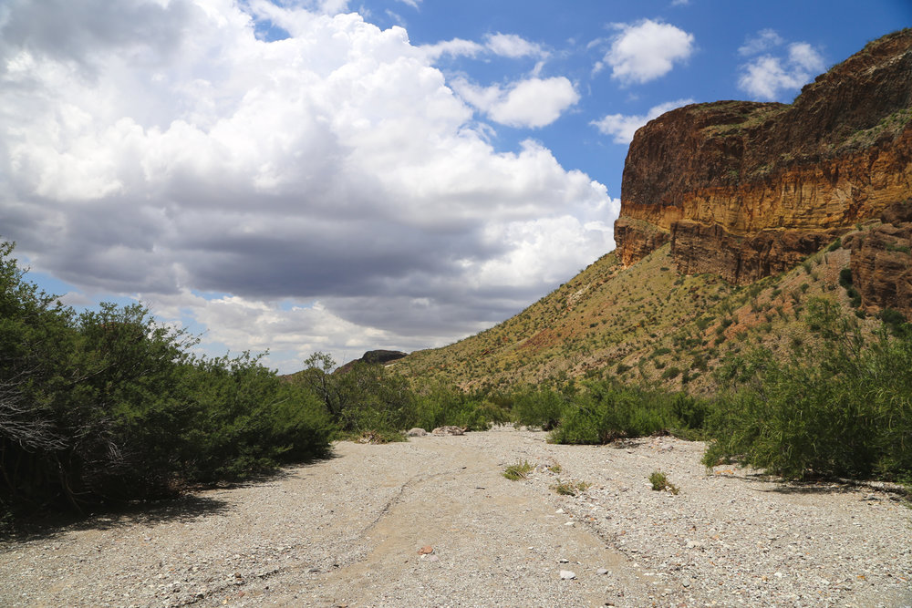 Best Hikes in Big Bend