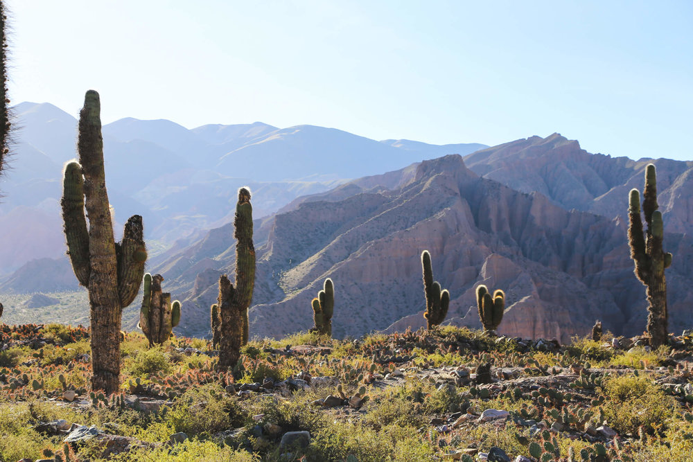 3 days in Jujuy