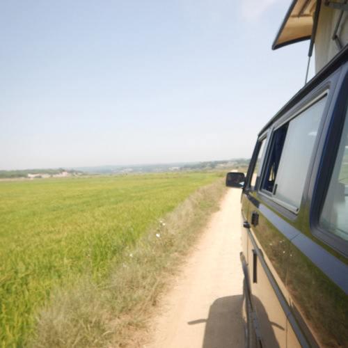 VW T3 rural life.jpg