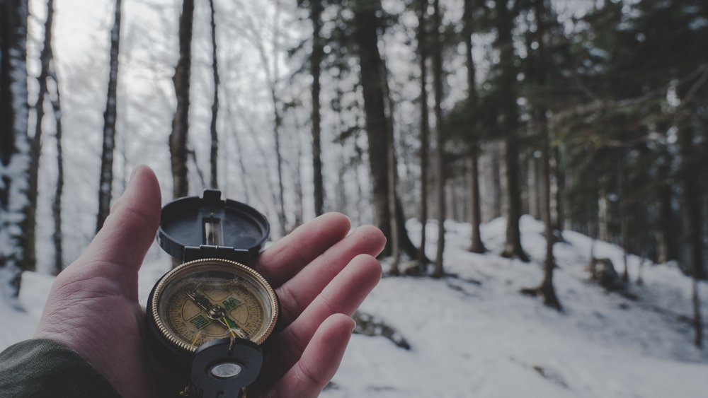 adult-cold-compass-1125272.jpg