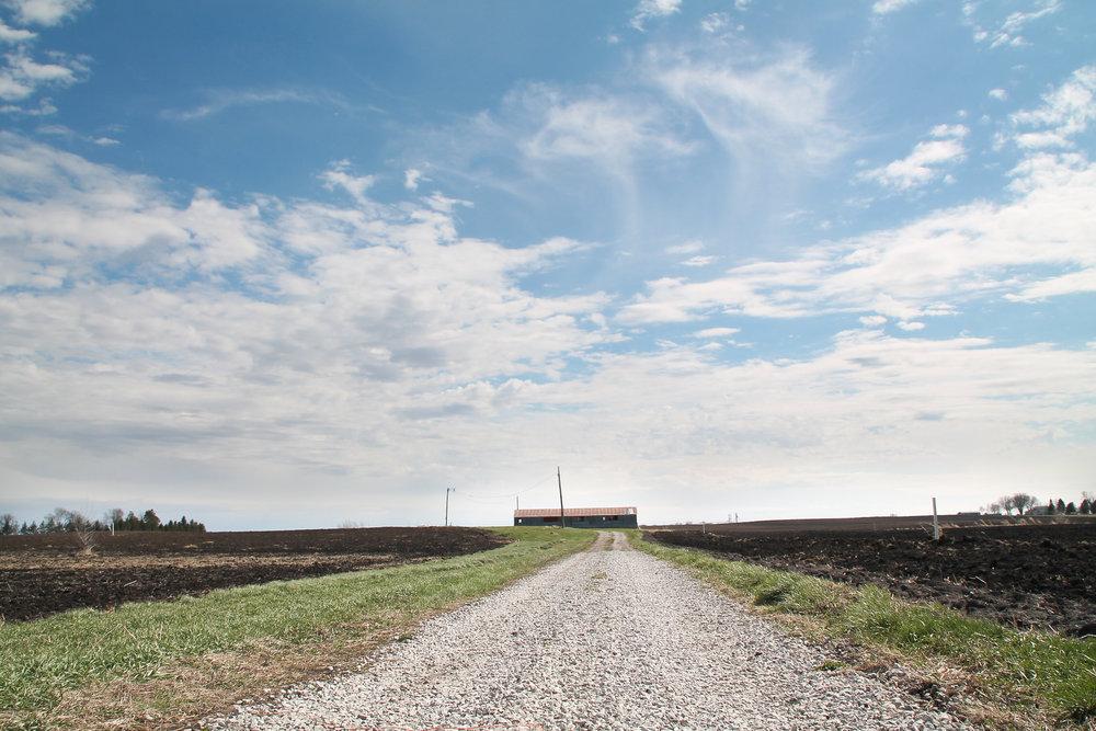 Catherine Reinhart. View near her home in   Ames, Iowa. 2019.