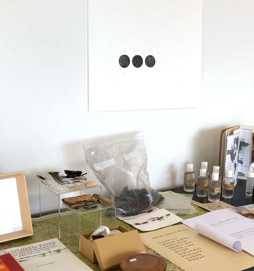 Material from the 'S' Project Archive showing at the  Queens Museum , New York as part of   S.T.E.P  . 2018.