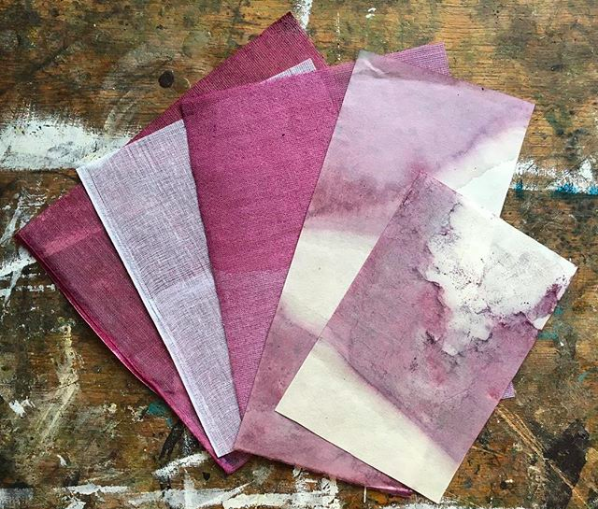 - From the Exchange between Katie Ione Craney in Alaska and Hannah Stageman in Essex Uk. Blueberry dyed gauze.