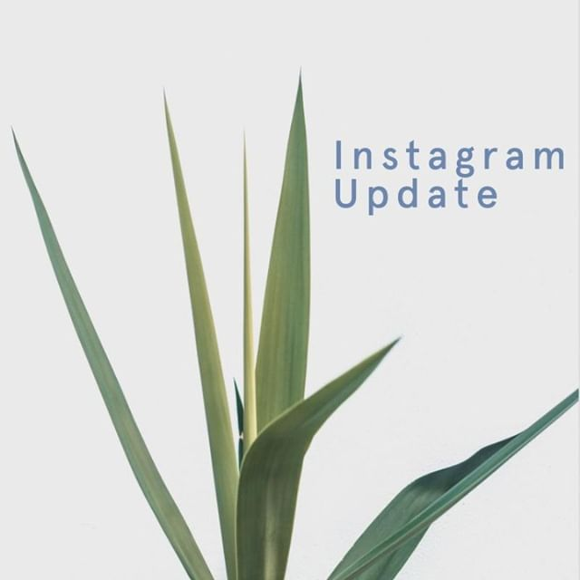 """▷Insta UPDATE ⠀⠀⠀⠀⠀⠀⠀⠀⠀ ⠀⠀⠀⠀⠀⠀⠀⠀⠀ Today, Instagram has introduced 'checkout'. ⠀⠀⠀⠀⠀⠀⠀⠀⠀ A new feature where shoppers can buy directly from brands on Instagram without leaving the platform. ⠀⠀⠀⠀⠀⠀⠀⠀⠀ ⠀⠀⠀⠀⠀⠀⠀⠀⠀ Currently only available in beta to a number large brands in the US... ⠀⠀⠀⠀⠀⠀⠀⠀⠀ ⠀⠀⠀⠀⠀⠀⠀⠀⠀ Here's how it works: ⠀⠀⠀⠀⠀⠀⠀⠀⠀ ⠀⠀⠀⠀⠀⠀⠀⠀⠀ When a users taps to view a product from a brand's shopping post, they'll see a """"Checkout on Instagram"""" button on the product page. ⠀⠀⠀⠀⠀⠀⠀⠀⠀ ⠀⠀⠀⠀⠀⠀⠀⠀⠀ Followed by various options such as size or colour, and proceed to payment without leaving Instagram. ⠀⠀⠀⠀⠀⠀⠀⠀⠀ ⠀⠀⠀⠀⠀⠀⠀⠀⠀ Users will only need to enter name, email, billing information and shipping address the first time they check out.⠀⠀⠀⠀⠀⠀⠀⠀⠀ ⠀⠀⠀⠀⠀⠀⠀⠀⠀ Once the first order is complete, Instagram will store the shoppers' information securely, available to the next time.⠀⠀⠀⠀⠀⠀⠀⠀⠀ ⠀⠀⠀⠀⠀⠀⠀⠀⠀ Notifications about shipment and delivery right inside Instagram are also right inside Instagram.⠀⠀⠀⠀⠀⠀⠀⠀⠀ ⠀⠀⠀⠀⠀⠀⠀⠀⠀ Will this amplify shopping on Instagram? What do you think?⠀⠀⠀⠀⠀⠀⠀⠀⠀ ⠀⠀⠀⠀⠀⠀⠀⠀⠀ (check the comments for a list of brands that are using this in the US)⠀⠀⠀⠀⠀⠀⠀⠀⠀ ⠀⠀⠀⠀⠀⠀⠀⠀⠀ ⠀⠀⠀⠀⠀⠀⠀⠀⠀ #instagramupdate #instagramcheckout"""