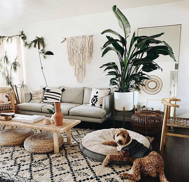 Indoor plant sales are booming. 🌵⠀⠀⠀⠀⠀⠀⠀⠀⠀ ⠀⠀⠀⠀⠀⠀⠀⠀⠀ Analysts say this is partly driven by millennials' living circumstances. Many millennials are waiting longer to buy homes and are living in smaller, urban spaces for longer. For many, that creates a need for some green to bring the outside in.⠀⠀⠀⠀⠀⠀⠀⠀⠀ ⠀⠀⠀⠀⠀⠀⠀⠀⠀ And the role of Social Media?⠀⠀⠀⠀⠀⠀⠀⠀⠀ ⠀⠀⠀⠀⠀⠀⠀⠀⠀ Companies like @thesill are thriving - as platforms like Instagram and Pinterest are full of inspirational and aspirational imagery - significantly driving purchase behaviour. ⠀⠀⠀⠀⠀⠀⠀⠀⠀ ⠀⠀⠀⠀⠀⠀⠀⠀⠀ Has your love for plants grown because of beautiful images on Instagram and Pinterest? ⠀⠀⠀⠀⠀⠀⠀⠀⠀ ⠀⠀⠀⠀⠀⠀⠀⠀⠀ It's Plant Appreciation Day. :) ⠀⠀⠀⠀⠀⠀⠀⠀⠀ ⠀⠀⠀⠀⠀⠀⠀⠀⠀ #plantappreciationday #socialmediamarketing #businessgrowth #loveofplants⠀⠀⠀⠀⠀⠀⠀⠀⠀ @aabbiiggaaiilll