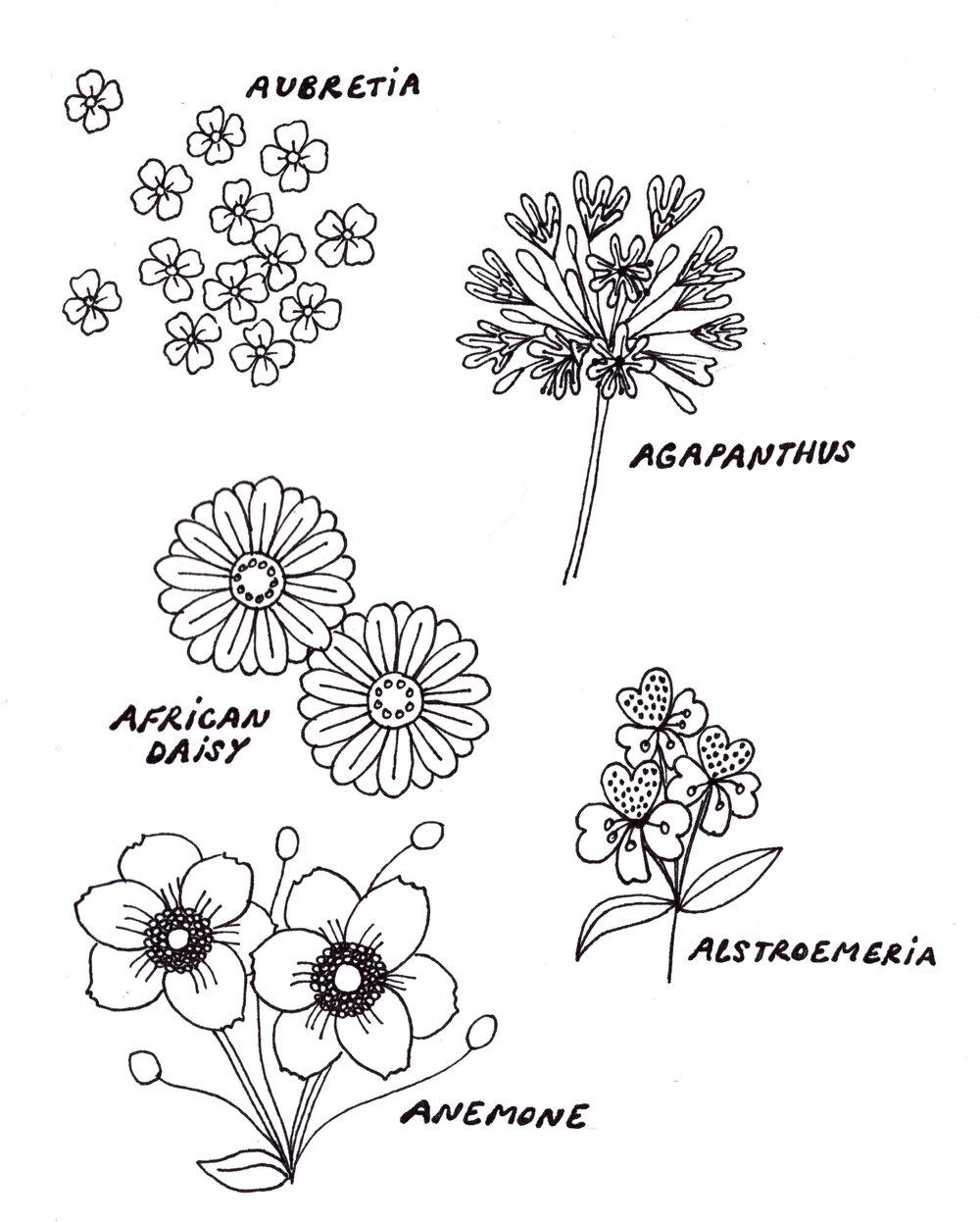 Botanical A.jpg