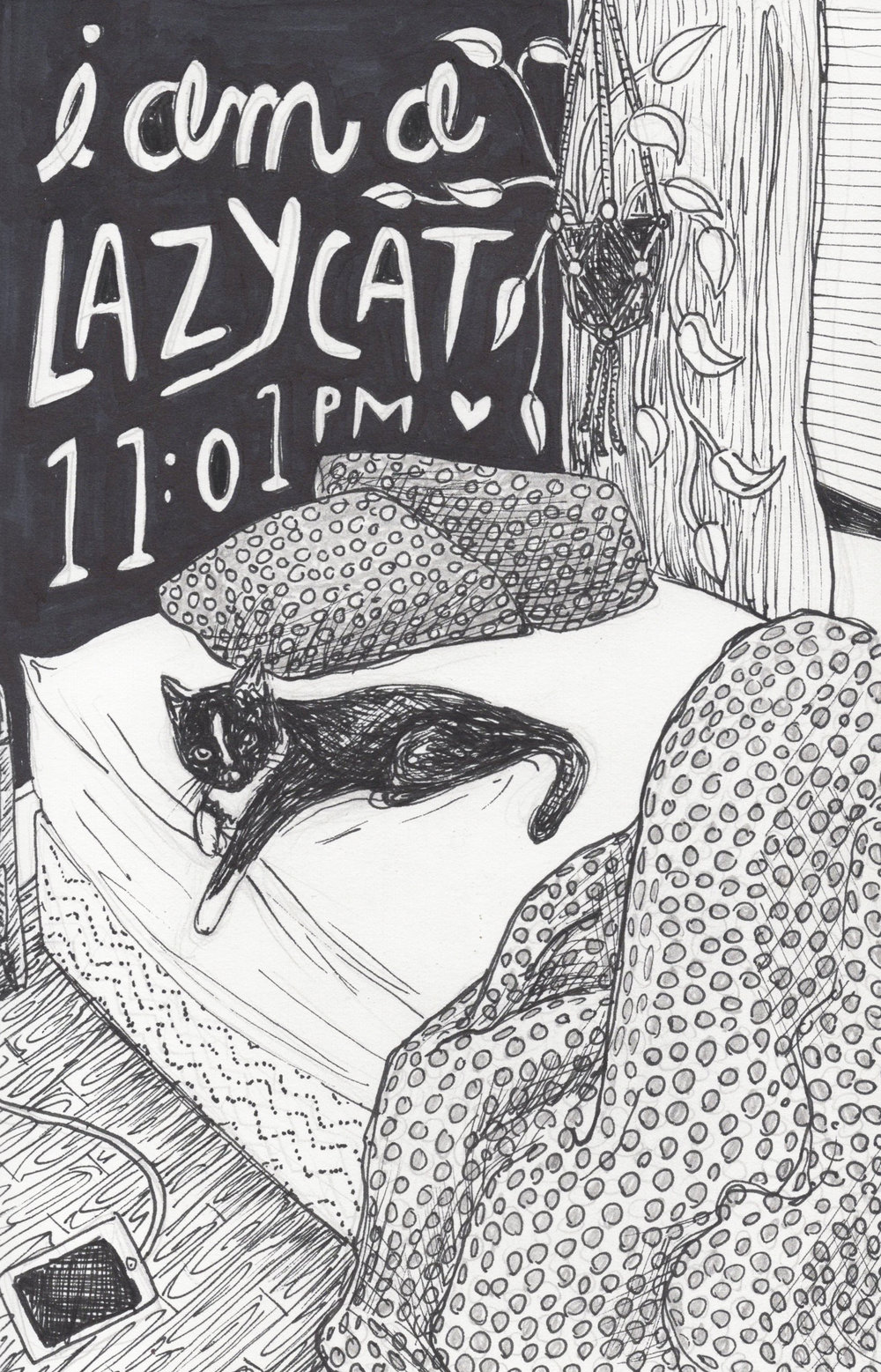 Lazy Cat.jpg
