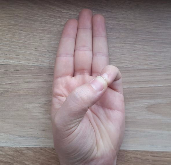 Varun - Thumb to Pinkie Fingertip.