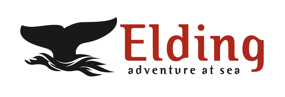 Elding_logo.jpg