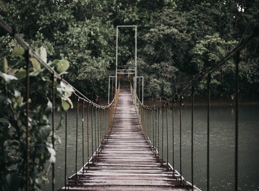 Rope & wood bridge suspended over a wide river surrounded by trees.