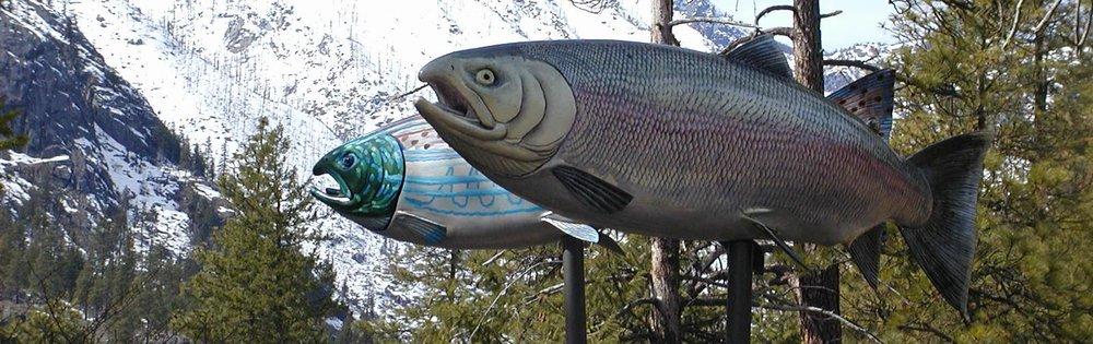 Salmon Art 3.JPG