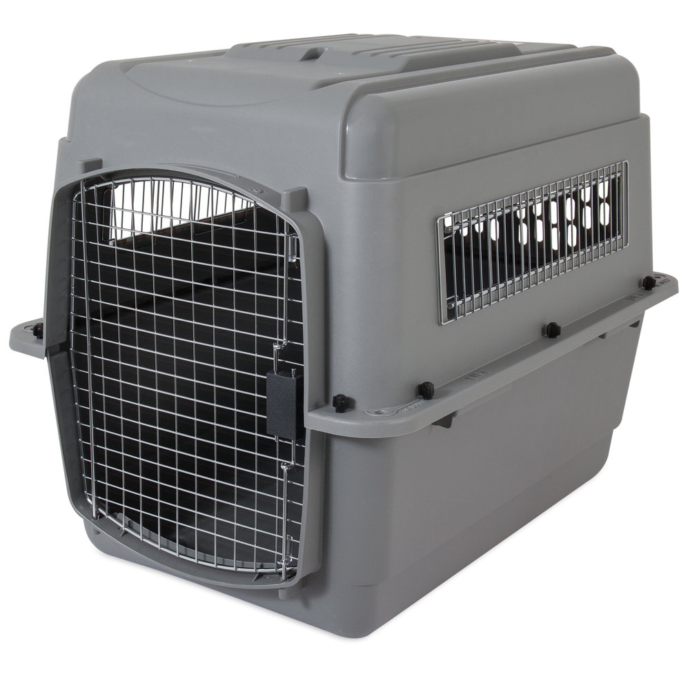 00300_PM_Sky_Kennel_30to50lbs_3qtr.jpg