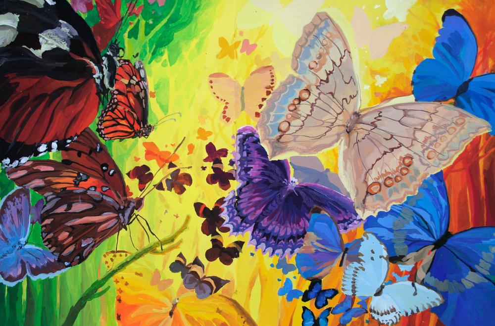 God's Color Box of Butterflies