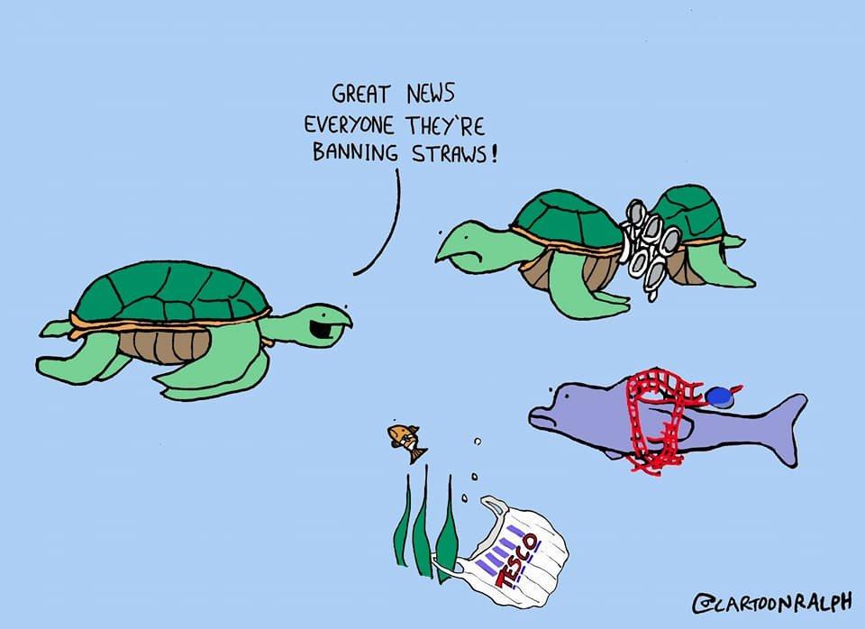 cartoon1.jpg