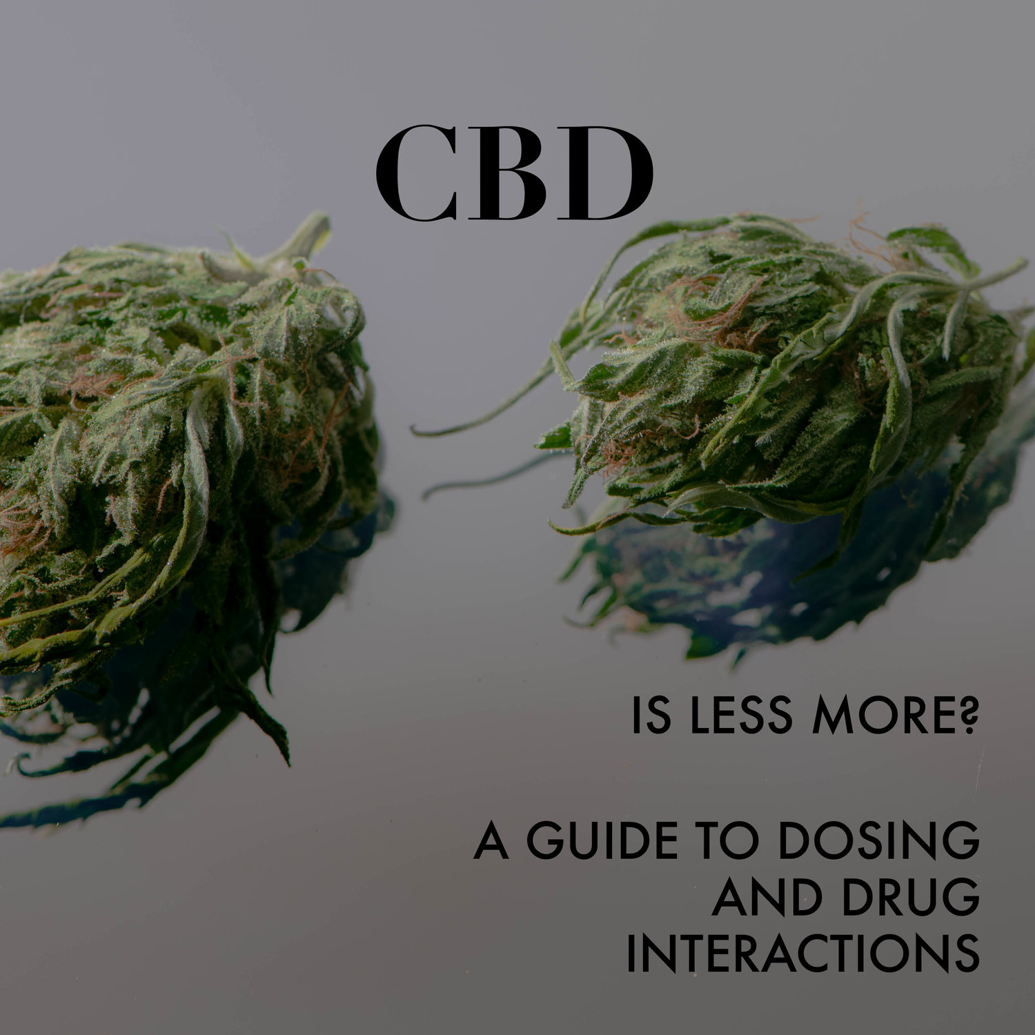 Is More CBD Better? Dosing and Drug Interactions (Post 1 of 2