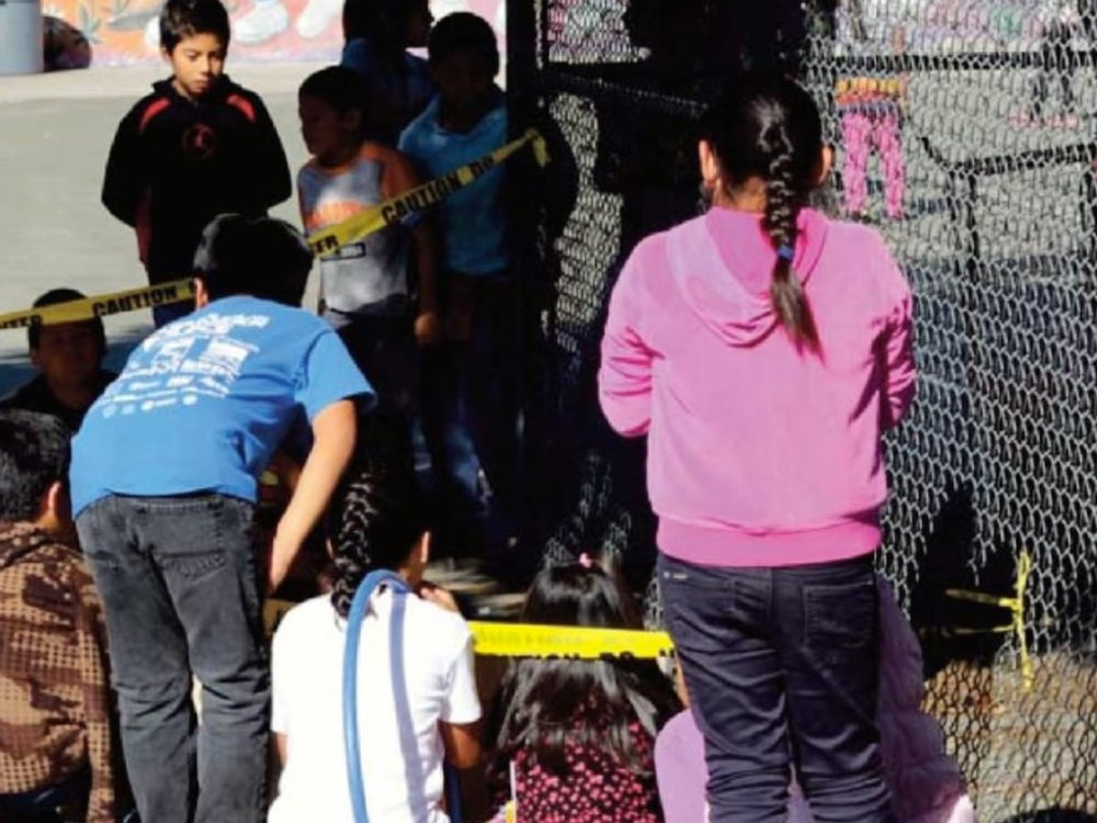 During their recess, young birders of Esperanza Elementary respected the Common Poorwill which shared the playground with them on the day of their Halloween Parade in 2015.