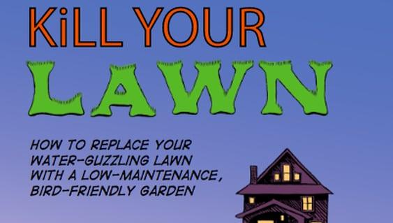 kill-your-lawn.jpg