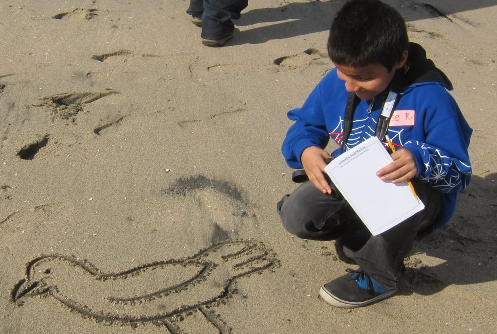 InterpNature_drawinginthesand.jpg