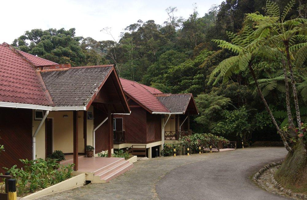 Eco-lodges
