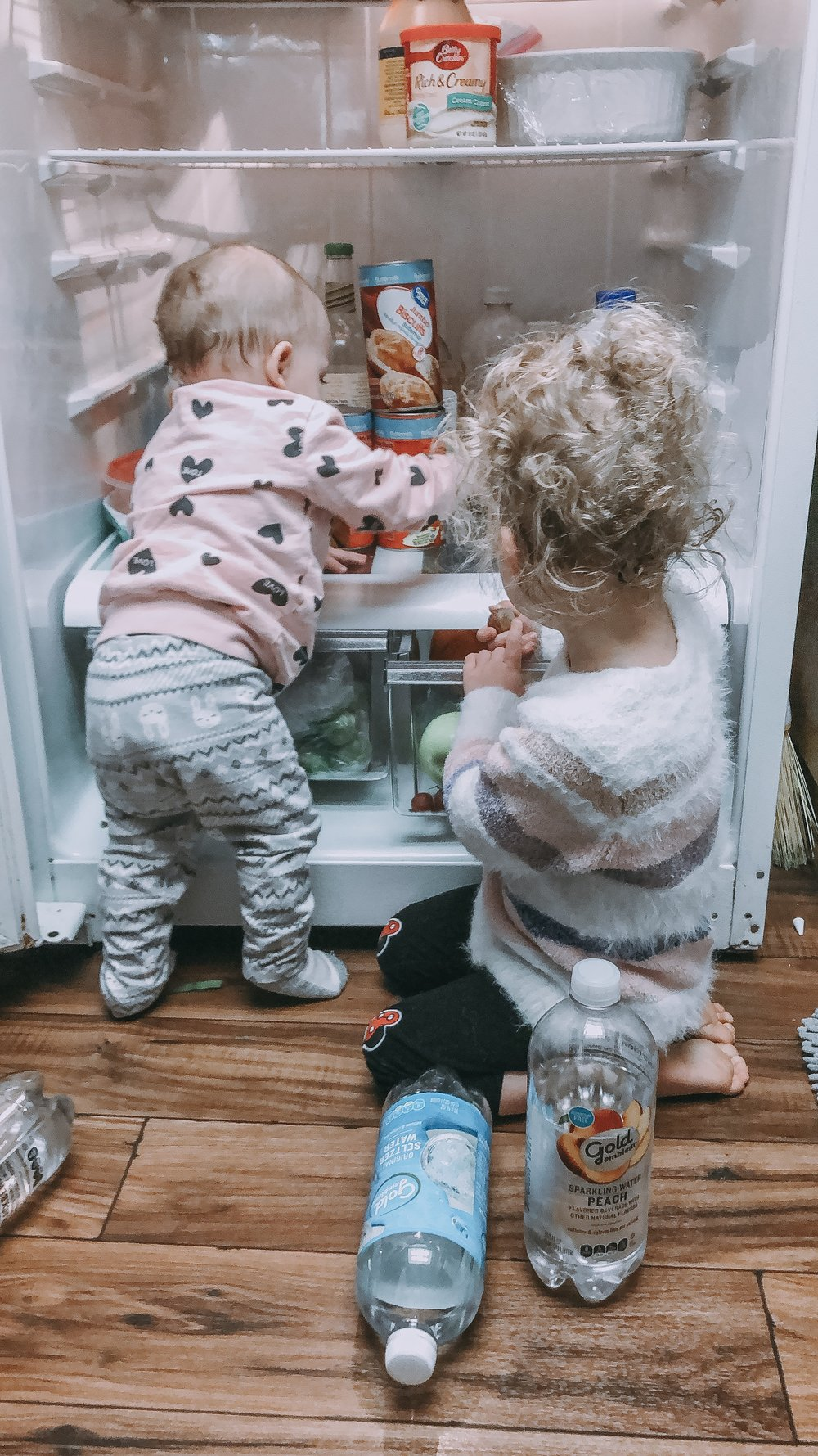 girlsfridge