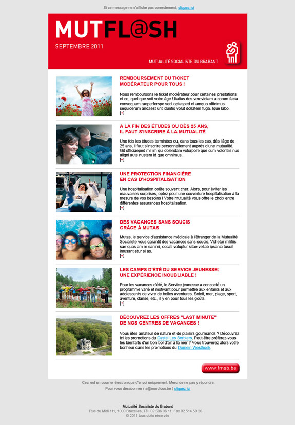 7_newsletterbat.jpg
