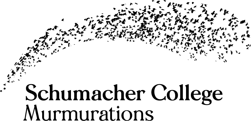 Schumacher College Murmurations
