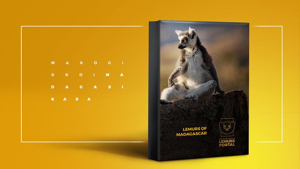 Lemurs_1.jpg