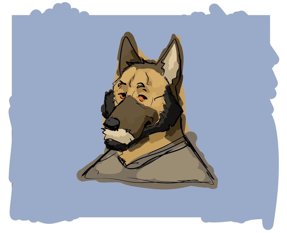 1 Cachorro.jpg