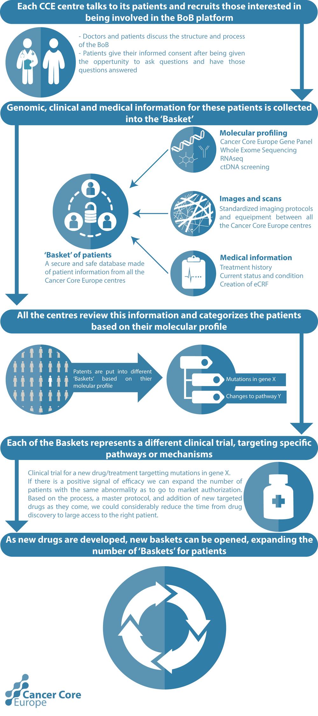 BoB Infographics.png