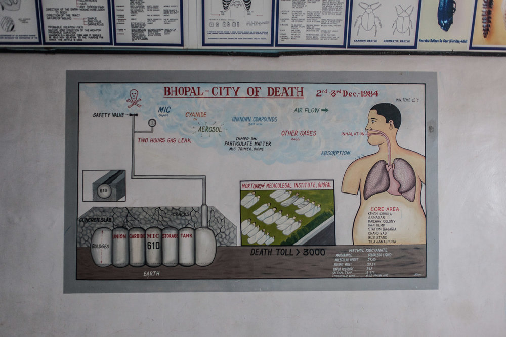 A poster in the Legal Medicine Institute depicting the tragedy.