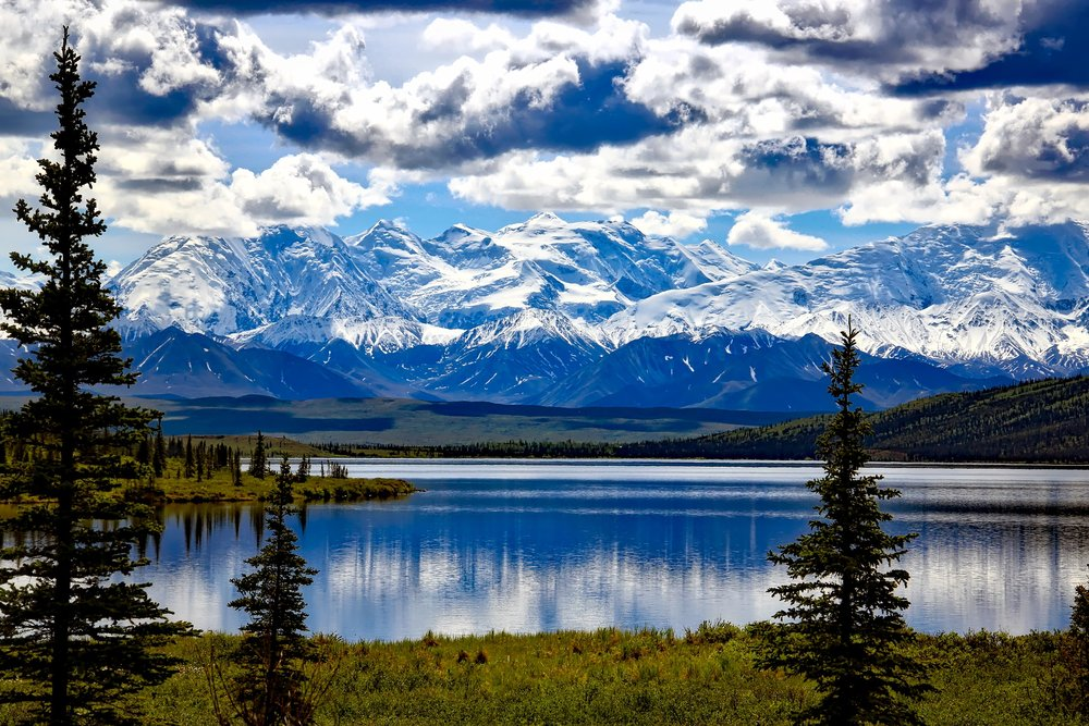 denali-national-park-1733313.jpg