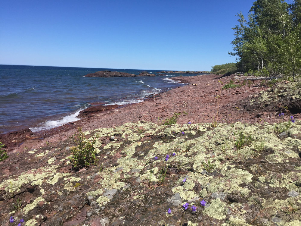 Established 2003, the preserve is made up of 34 acres and owned by HKCD . 24 of the acres has a conservation easement in favor of Keweenaw Land Trust. 10 acres were bargain saled by the Giannini family.