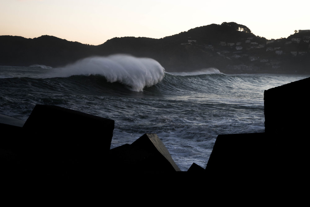 Lyall Bay Monsters -