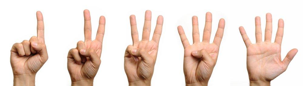 1-2-3-4-5-fingers-on-hand11.jpg