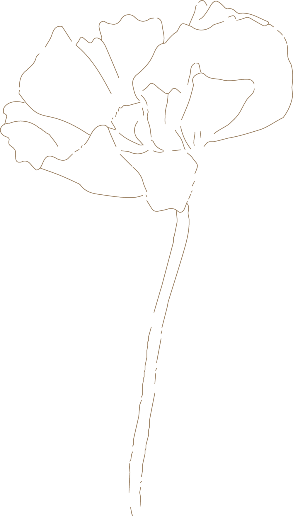 BDE Flower Logo- Grey.png