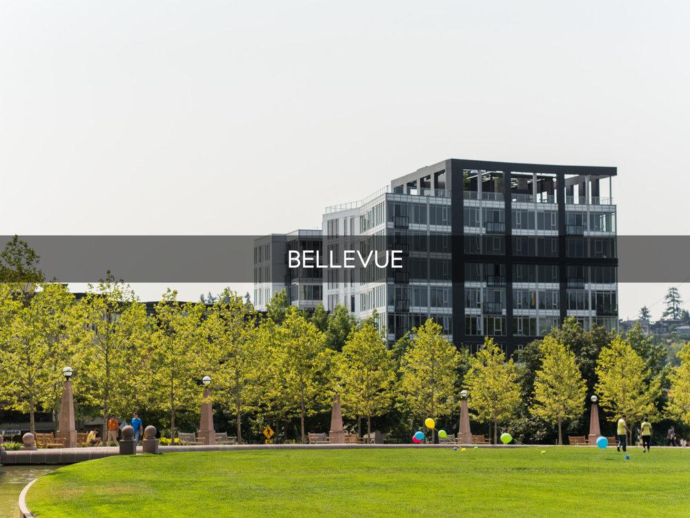 Bellevue-5910.png